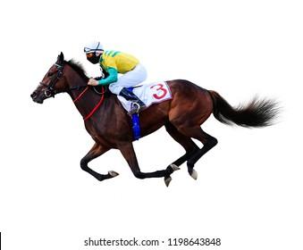 jockey horse jump isolated on white background