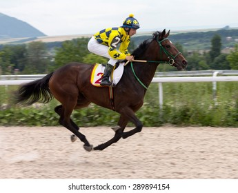 Jockey on horse.Hippodrome of Pyatigorsk (Northern Caucasus), season 2015.