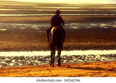 Jockey on racehorse brisbane beach racing silhouette