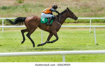 Jockey and racehorse running on the race track