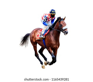 jockey riding a horse rides  isolated on white background