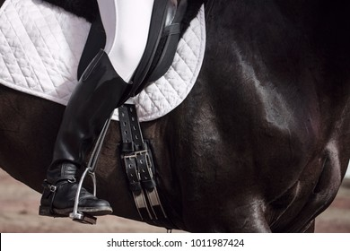 The Jockey Sits In Saddle On A Horse Shooting Close Up Leg