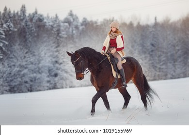 Jockey woman rider rides brown horse on winter forest in snow. Concept walk in farm.