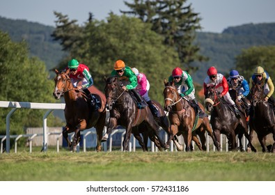 Jockeys on their horses during horse racing, reaching the finish line during nice summer weather.