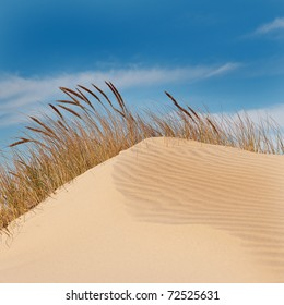 Jockey's Ridge Sand Dune in the Outer Banks, North Carolina.