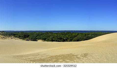Jockey's Ridge State Park Sand Dunes and Roanoke Sound Panorama in the Outer Banks, North Carolina.