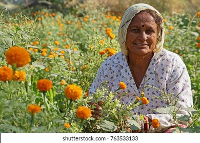 JODHPUR, INDIA, October 30, 2017 : Portrait of an indian woman with flowers in the fields of the countryside around Jodhpur.