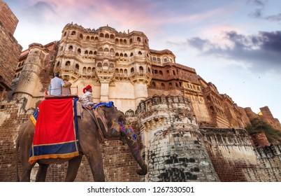 Jodhpur, Rajasthan, India, December 14,2017: Decorated Indian elephant with tourist couple at historic Mehrangarh Fort Jodhpur Rajasthan at sunset.