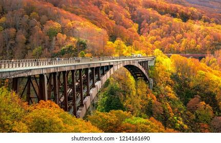 Jogakura Bridge in Aomori Prefecture with Autumn Leaves background. A wonderful view of Jyogakura-keiryu Stream, a famous place in the Towada-hachimantai National Park