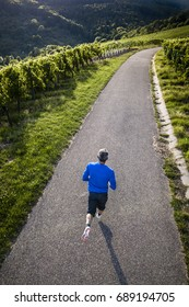jogger on a road in a vineyard in an aerial view