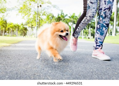 jogging with her pomeranian dog in the park.