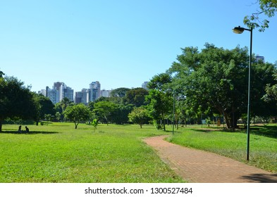 A jogging lane at the park surrounded by lots of green and light in Goiania, Goias, Brazil