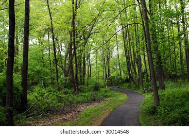 a jogging or walking trail in early spring