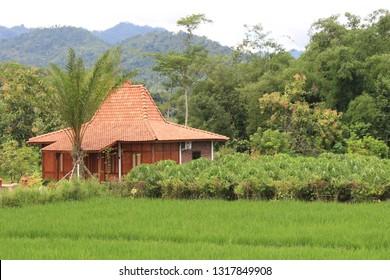 Joglo house (rumah joglo), javanese traditional house in balkondes karanganyar borobudur, magelang, central java, Indonesia