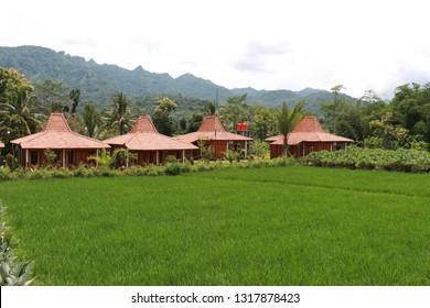 joglo house (rumah joglo), javanese traditional house in balonkes karanganyar borobudur, magelang, indonesia