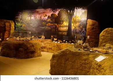 JOHN DAY, OREGON - JUN 23, 2018 - Dioramas and fossils of prehistoric mammals in the Visitors Center of the John Day Fossil Beds National Monument, Oregon