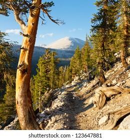 John Muir Trail & Pacific Crest Trail in the Sierra Nevada, California, USA