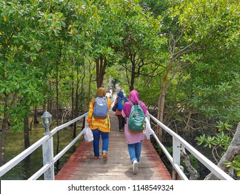 Johor, Malaysia - 28 JULY 2018 : Tourist group walking from Sibu island jetty to resort through mangrove forests. The island located in Johor Marine Park.