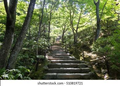 Jojakko-ji temple at Kyoto, Japan