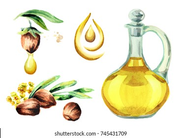 Jojoba oil set. Watercolor illustration