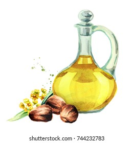 Jojoba oil. Watercolor hand drawn illustration