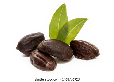 Jojoba seeds isolated on white background