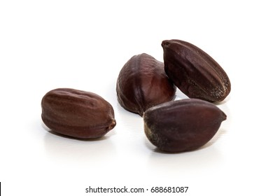 Jojoba seeds in white background