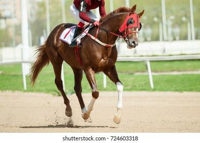 jokey on a horse runs first on a racetrack