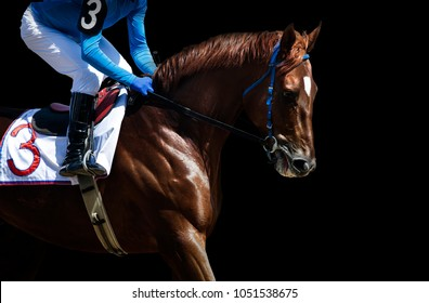 jokey on a racing horse detail isolated on black background