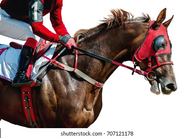 Jokey on a thoroughbred horse in red mask runs isolated on white background