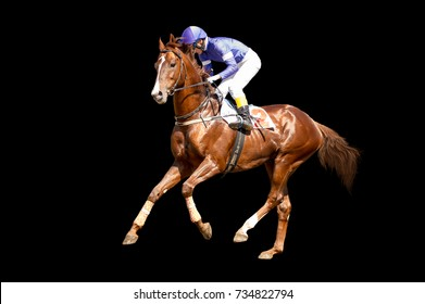 Jokey on a thoroughbred horse runs isolated on black background