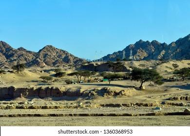 Jordan, arid landscape with camels near Aqaba