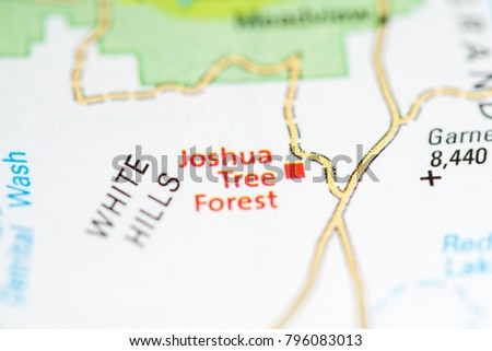 Joshua Tree Forest Arizona USA On Stock Photo (Edit Now) 796083013 ...