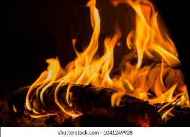 joy and pleasure camp fire