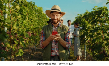 Joyful bearded farmer wearing strawhat browsing fun content on smartphone during rest on grapevine alley at vineyard. Wine worker. People and technology.