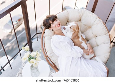 Joyful girl sitting in chair beside vase of white roses and stroking beagle dog. Beautiful brown-haired woman enjoying fresh air on balcony with pet lies on her knees.