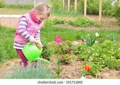 Joyful little girl in pink jacket watering flowers with green watering pot in the garden