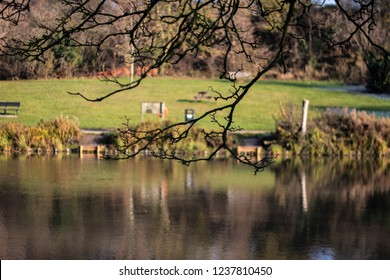 Jubilee Lake Royal Wootton Bassett in Wiltshire with overhanging trees
