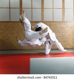 Judo fight, color version