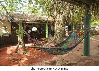A Juice bar with a hammock in quiet Playa Garza Nosara, Costa Rica