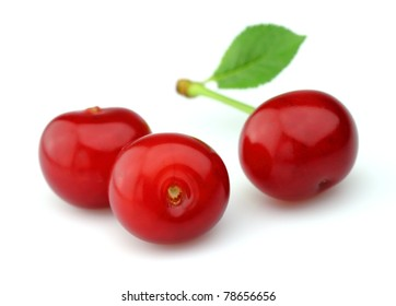 Juicy cherry with leaves