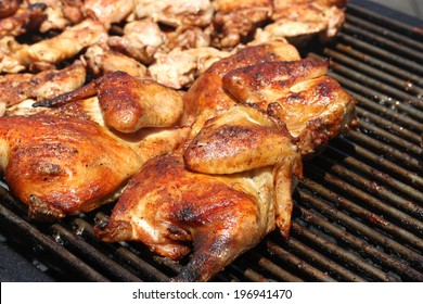 Juicy Chicken on Barbeque Grill