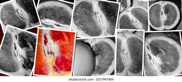 juicy erotic grapefruit