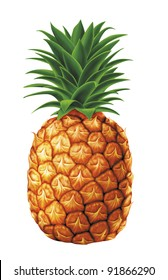 juicy fresh water drops of pineapple with white background