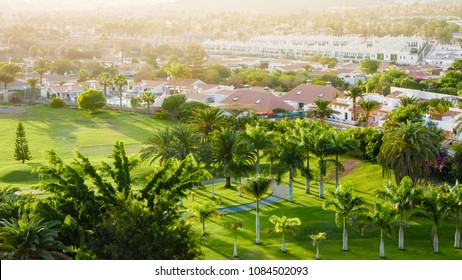 Juicy green of golf course during sunset with wonderful sunbeams.