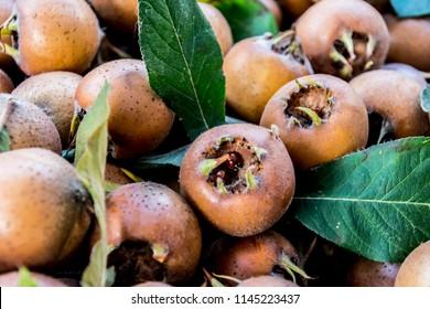 juicy ripe medlars