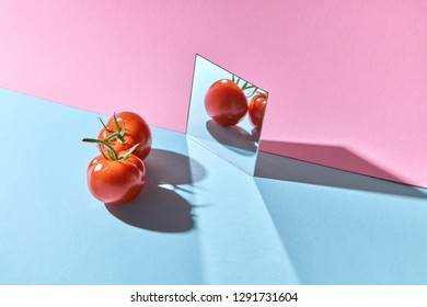 Juicy tomatoes with a stem are reflected on a pink-blue cardboard background with copy space. Organic Healthy Vegetable