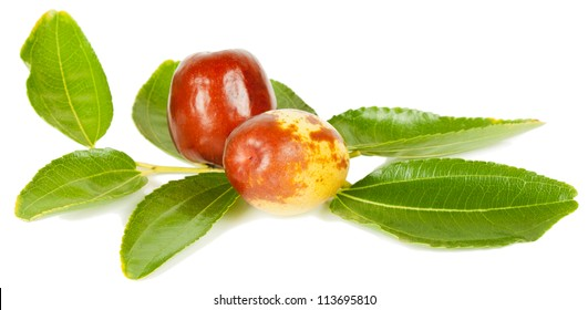 jujube fruit  (or Chinese date or Ziziphus zizyphus )  on branch with leaves  isolated on white background