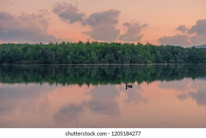 Julian Price Memorial Park, North Carolina, USA - June 14, 2018: Nice sunset at a lake in Julian Price Memorial Park with a duck in the water