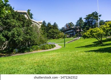 July 13, 2019 Berkeley / CA / USA - Green, lush meadow in the campus of UC Berkeley, San Francisco bay area, California